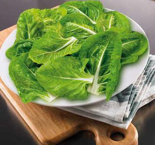 categoria-verduras-opt.jpg